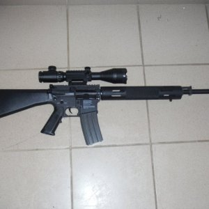 "CA Bushmaster Predator (My ""Mk12"")"