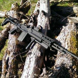 WE M14 EBR - Maxi